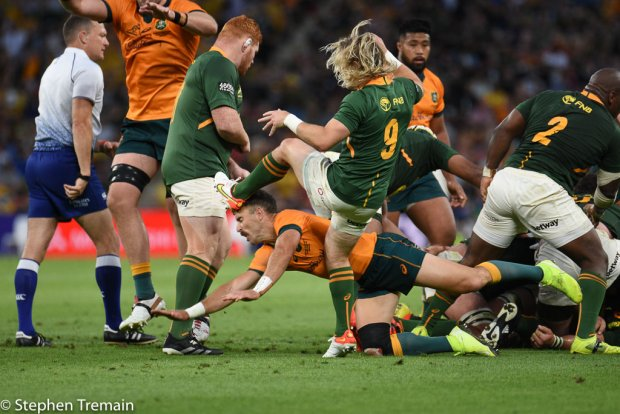 Faf de Klerk clears as Nic White dives to charge down
